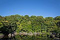 Japanese garden scenery at Expo Commemoration Park 2015-06-04.jpg