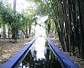 Jardin Majorelle (Marrakesch, Marokko) 02.jpg