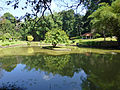 Jardin botanique de Kandy-Sri Lanka (5).jpg