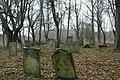 Jastrowie, cmentarz żydowski , 2 poł .XVIII.JPG