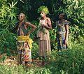 Jebola - Democratic Republic of Congo 1a.jpg