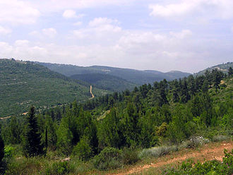 Judaean Mountains - View of the Judaean Hills near Jerusalem