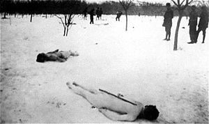 Legionnaires' rebellion and Bucharest pogrom - The stripped bodies of Jewish Romanian victims, discarded in the snow at Jilava forest.