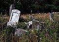 Jewish cemetery Otwock (Karczew - Anielin) IMGP7676.jpg