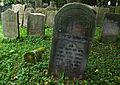 Jewish cemetery Szydlowiec IMGP7606.jpg
