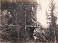 Jindrich Eckert - Most v lese (1880-2).jpg
