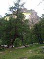 Ködnitztal bei Kals, Osttirol.jpg