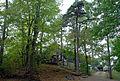 Kammersteinerhütte durch Wald.jpg
