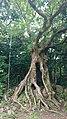 Kenting National Park - Cinnamon Lin - 001.jpg