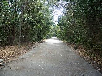 Dagny Johnson Key Largo Hammock Botanical State Park - Image: Key Largo FL Dagny Johnson Key SP path 01