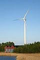 Kirrinsannan uusin tuulivoimala.jpg