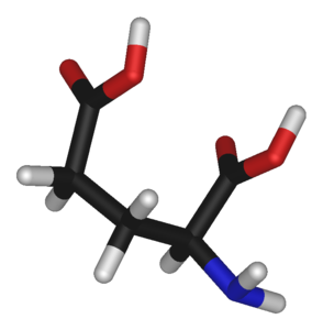 グルタミン酸's relation image