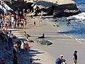 La Jolla beach.jpg