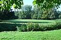 La vallée de la Cléry La Maison Blanche St Hilaire les Andrésis (Loiret) Randonnée pédestre.JPG
