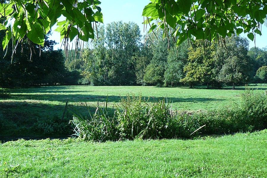 """Une partie de la vallée de la Cléry (affluent du Loing) à la hauteur du lieu-dit """"La Maison Blanche"""" à Saint Hilaire les Andrésis près de Courtenay dans le Loiret (France)."""