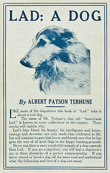 Lad A Dog (1919, touched up).jpg