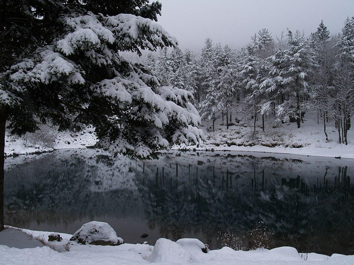 Lago delle lame wikipedia for Lago store genova