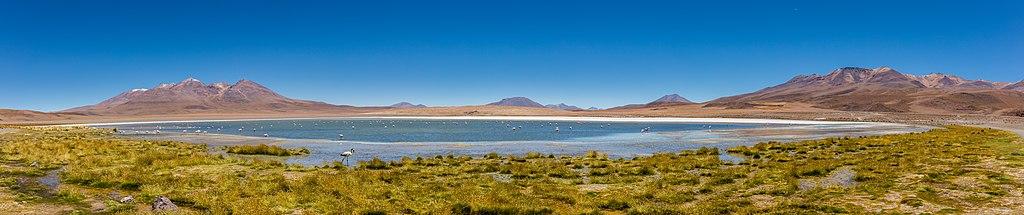 Laguna Cañapa, Bolivia, 2016-02-03, DD 70-74 PAN.JPG