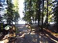 Lake McDonald, 10 Mile Pullout (Jackson Bay) - 3 (7644808066).jpg