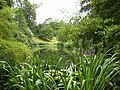 Lake in the gardens of Powis Castle - geograph.org.uk - 220053.jpg
