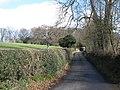 Lane near The Riding - geograph.org.uk - 1269242.jpg