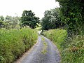 Lane to the south of Aclare - geograph.org.uk - 1393029.jpg