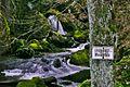 Lauterbach Wasserfall bei Schramberg - panoramio.jpg