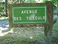 Le Touquet-Paris-Plage (Avenue des Tilleuls).JPG