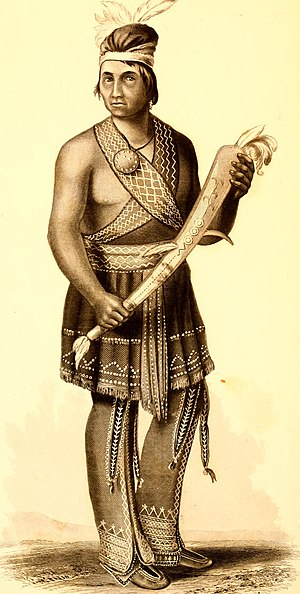 League of the Ho-dé-no-sau-nee, or Iroquois (1851) (14772338125).jpg