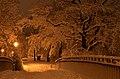 Lebenswertes chemnitz winter schlossteichinsel nacht schnee bruecke.jpg