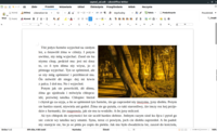 LibreOffice Writer 6.3.1.2 szl tabbed.png