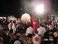 Lion divine service festival - panoramio.jpg