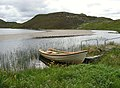 Loch an Dùin - geograph.org.uk - 492068.jpg
