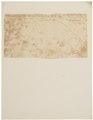 Loncheres paleacea - 1700-1880 - Print - Iconographia Zoologica - Special Collections University of Amsterdam - UBA01 IZ20600137.tif