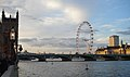 London Eye from The Terrace - Houses of Parliament.jpg