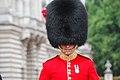 Londra - Cambio della guardia a Buckingham Palace - panoramio.jpg