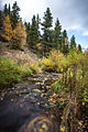 Long exposure Stream, Fall Colors at Rocky Mountain National Park, Colorado.jpg