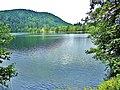 Longemer. Le lac vu de la route Nord.jpg