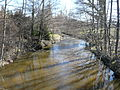 Loue Sarlande D81E2 près Moulin du Pont aval.JPG