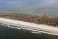 Luftaufnahmen Nordseekueste 2012-05-by-RaBoe-D50 053.jpg