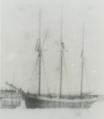 M.R. Warner.png