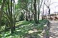 MADRID A.V.U. JARDIN DEL CAMPO DEL MORO - panoramio - Concepcion AMAT ORTA… (2).jpg