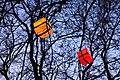 Magic tree (4180258764).jpg