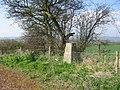 Mainstone Trig - geograph.org.uk - 6780.jpg
