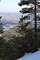 Maljen - Divčibare - zapadna Srbija - vrh Velika Pleća - pogled ka Tometinom polju 2.jpg