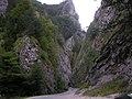 Manínska tiesňava - panoramio.jpg