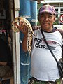 Man selling python at Jatinegara Market.jpg