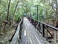 Mangrove Study Tour Walkway, Chulachomklao Fort Museum - panoramio (1).jpg