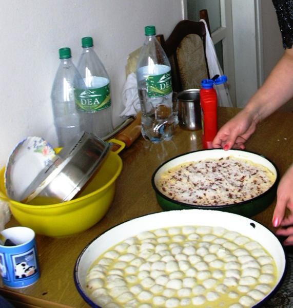 Description Mantija ushqim i zakonshem ne kokaj.png