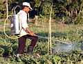 Manual sprayer.jpg